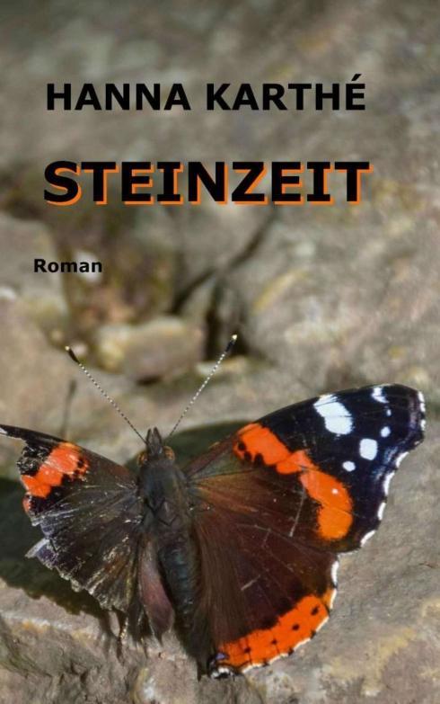 Cover-Bild Steinzeit