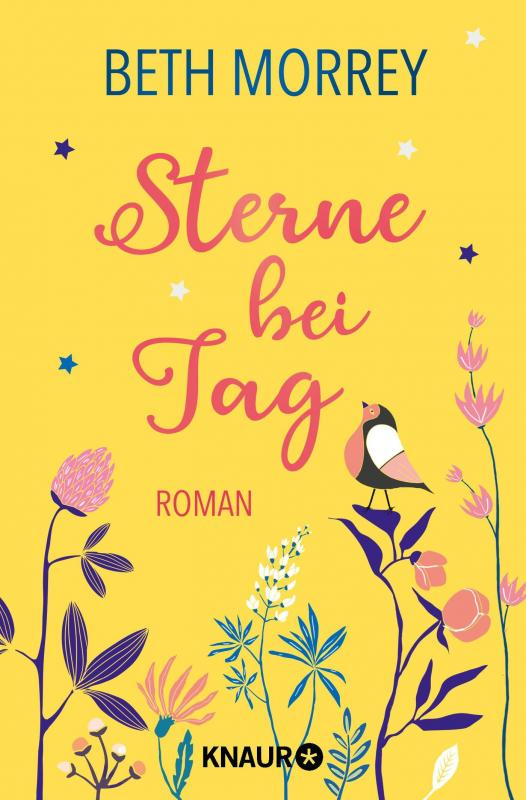 Cover-Bild Sterne bei Tag