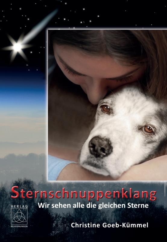 Cover-Bild Sternschnuppenklang