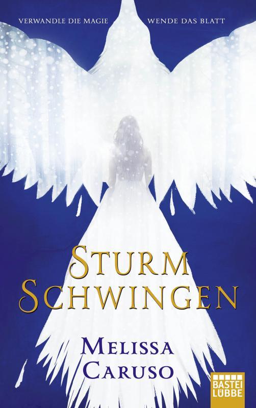 Cover-Bild Sturmschwingen