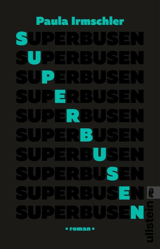 Cover-Bild Superbusen