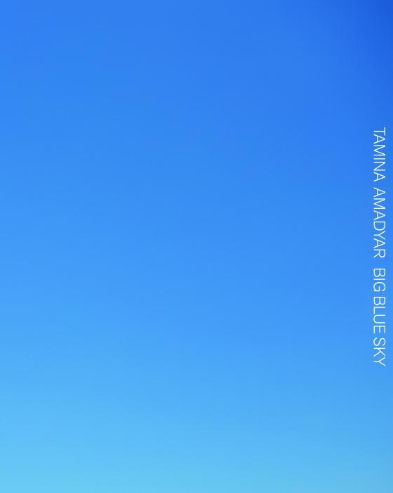 Cover-Bild Tamina Amadyar. Big Blue Sky