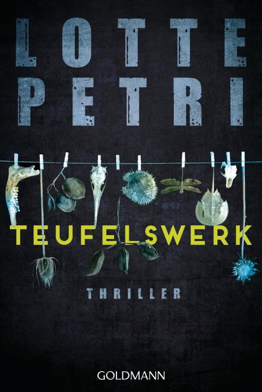 Cover-Bild Teufelswerk