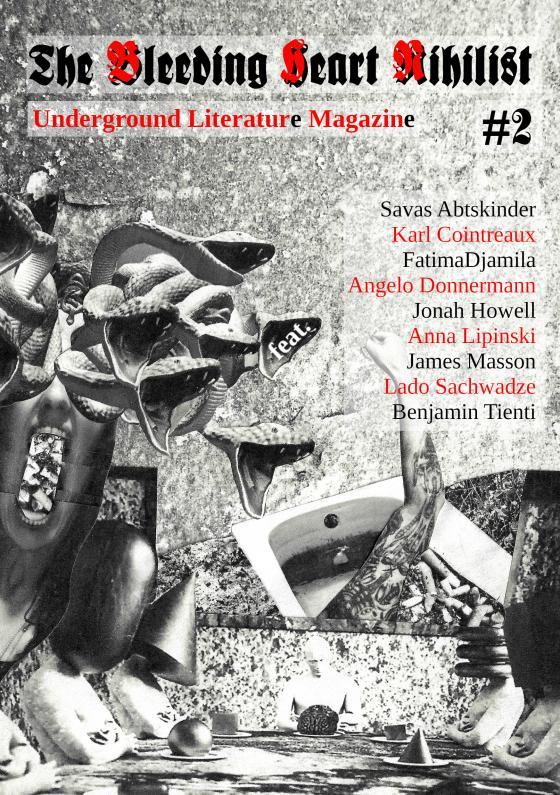 Cover-Bild The Bleeding Heart Nihilist #02