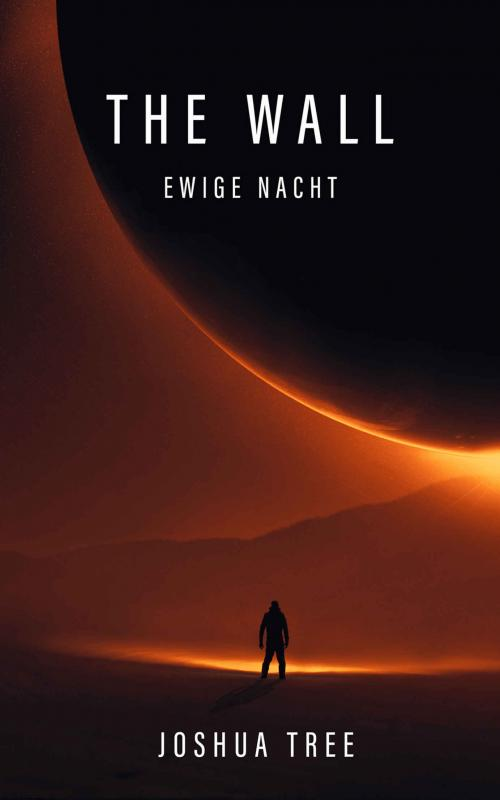 Cover-Bild The Wall - Ewige Nacht