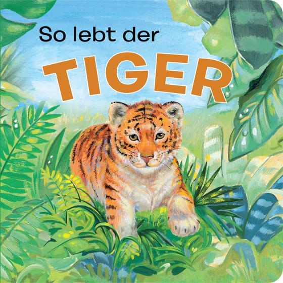 Cover-Bild Tierkindergeschichten - So lebt der Tiger - Pappbilderbuch mit farbigen Illustrationen für Kinder ab 18 Monaten