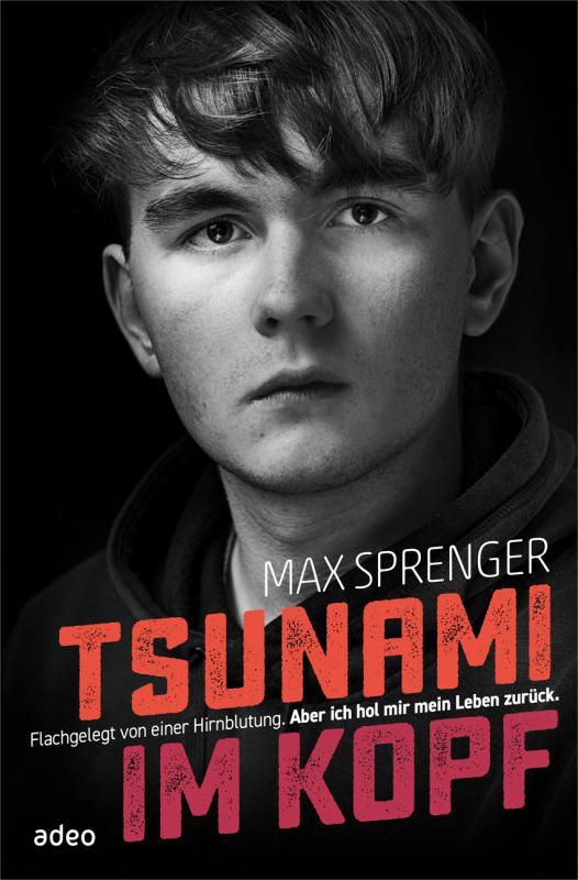 Cover-Bild Tsunami im Kopf