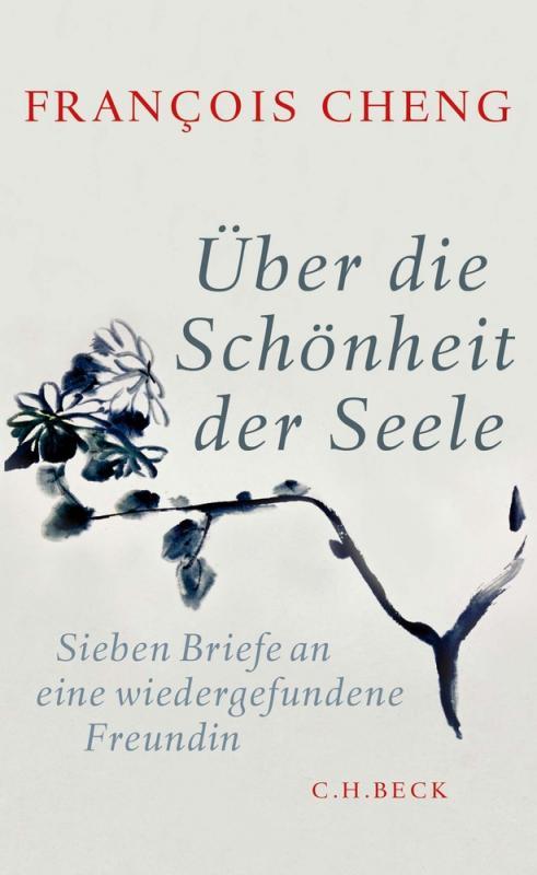 Cover-Bild Über die Schönheit der Seele