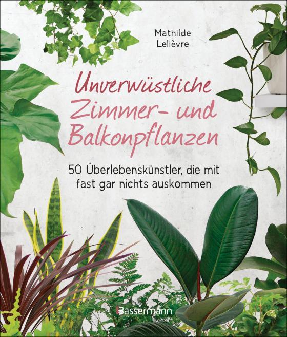 Cover-Bild Unverwüstliche Zimmer- und Balkonpflanzen