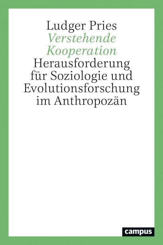 Cover-Bild Verstehende Kooperation