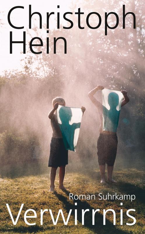Cover-Bild Verwirrnis
