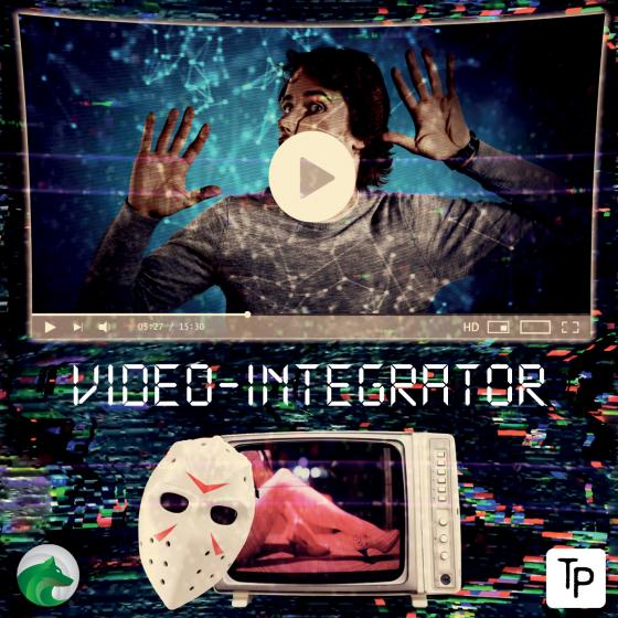 Cover-Bild Video-Integrator