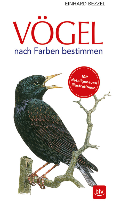 Cover-Bild Vögel nach Farben bestimmen
