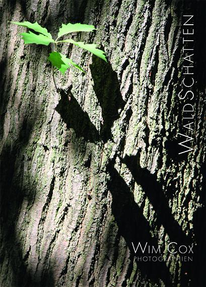 Cover-Bild Waldschatten