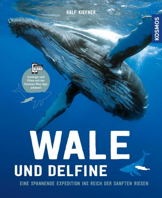 Cover-Bild Wale & Delfine