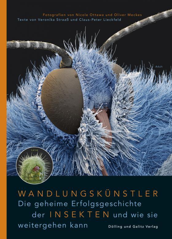 Cover-Bild Wandlungskünstler. Die geheime Erfolgsgeschichte der Insekten und wie sie weitergehen kann