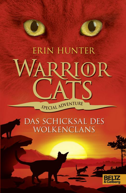 Cover-Bild Warrior Cats - Special Adventure. Das Schicksal des WolkenClans