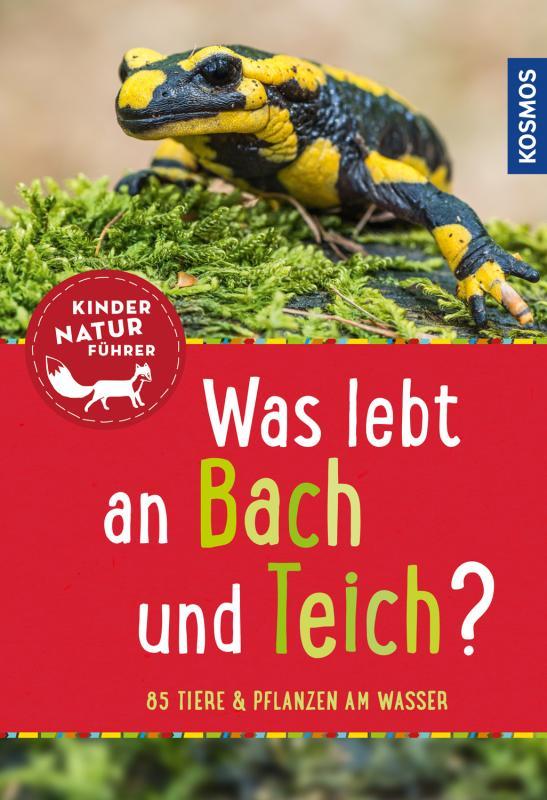 Cover-Bild Was lebt an Bach und Teich? Kindernaturführer