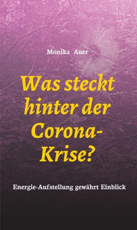 Cover-Bild Was steckt hinter der Corona-Krise?