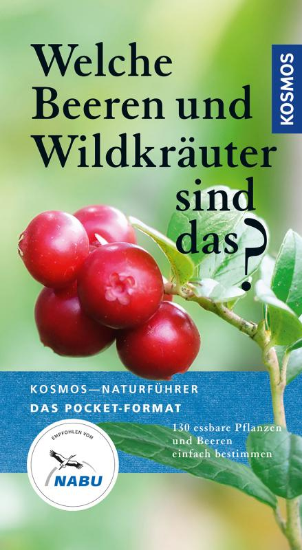 Cover-Bild Welche Beeren und Wildkräuter sind das?