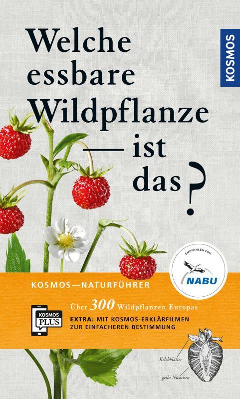 Cover-Bild Welche essbare Wildpflanze ist das?