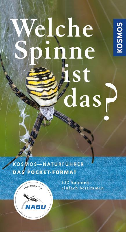 Cover-Bild Welche Spinne ist das?