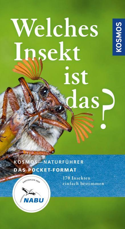 Cover-Bild Welches Insekt ist das?
