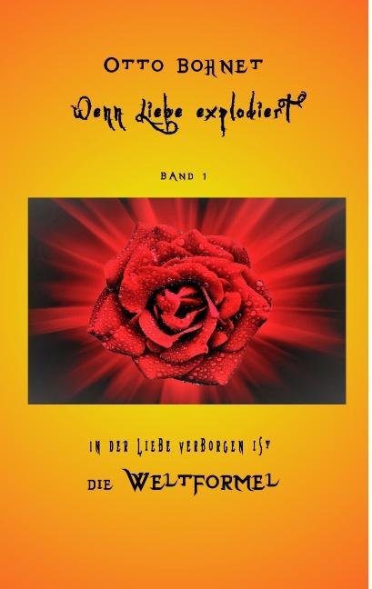 Cover-Bild Wenn Liebe explodiert, Band 1