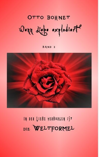 Cover-Bild Wenn Liebe explodiert - Band 2