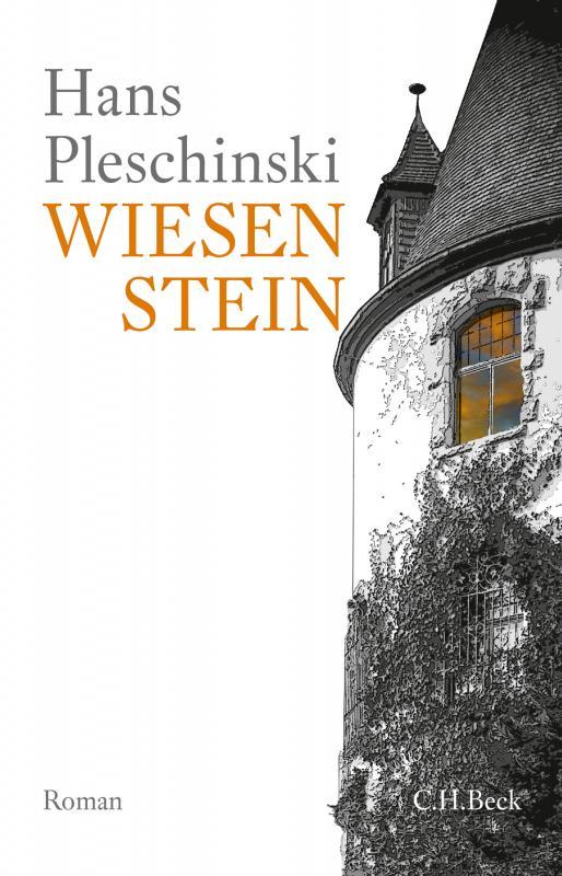 Cover-Bild Wiesenstein