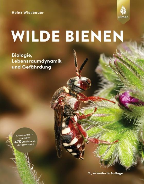 Cover-Bild Wilde Bienen