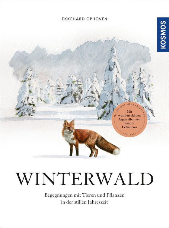 Cover-Bild Winterwald