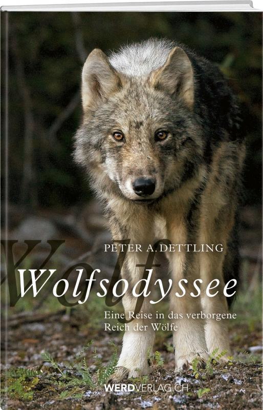 Cover-Bild Wolfsodyssee