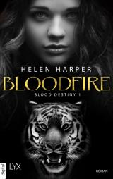 Cover-Bild Blood Destiny - Bloodfire