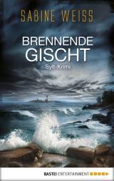 Cover-Bild Brennende Gischt