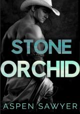 Cover-Bild Cowboys der Savanne / Stone Orchid