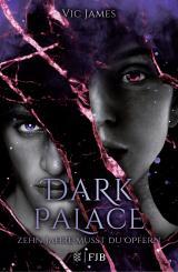 Cover-Bild Dark Palace – Zehn Jahre musst du opfern