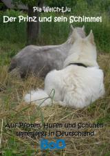 Cover-Bild Der Prinz und sein Schimmel