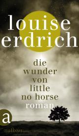 Cover-Bild Die Wunder von Little No Horse