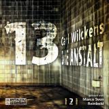 Cover-Bild Dreizehn. Die Anstalt