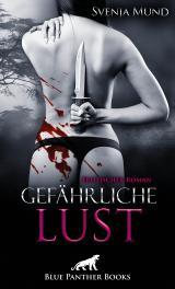 Cover-Bild Gefährliche Lust | Erotischer Roman