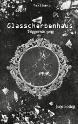 Cover-Bild Glasscherbenhaus