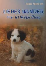 Cover-Bild Liebes Wunder