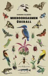 Cover-Bild Mikroorgasmen überall