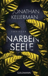 Cover-Bild Narbenseele