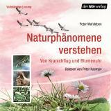Cover-Bild Naturphänomene verstehen