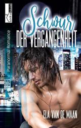 Cover-Bild Schwur der Vergangenheit (Into the Dusk 1)