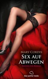 Cover-Bild Sex auf Abwegen   Erotischer Roman