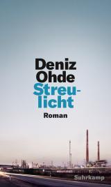 Cover-Bild Streulicht