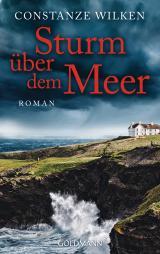 Cover-Bild Sturm über dem Meer